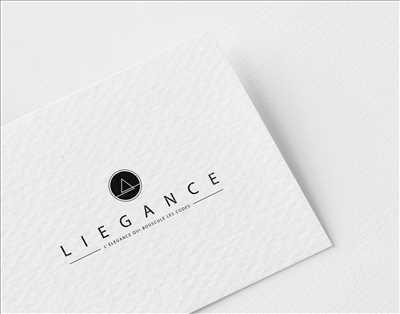 Photo créateur de logo freelance n°107 dans le département 31 par Laurent Bayot