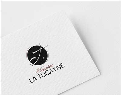 Photo créateur de logo freelance n°108 zone Haute-Garonne par Laurent Bayot