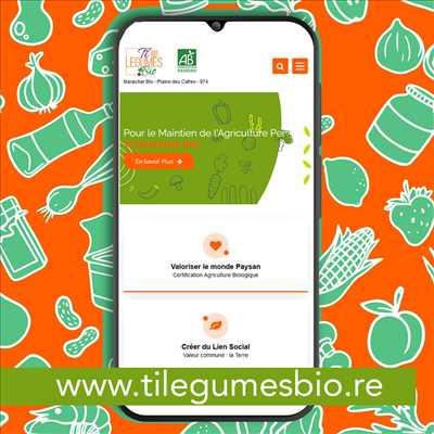 Exemple créateur de site freelance n°357 zone La Réunion par MimiLaFouine